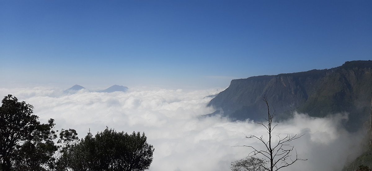How to Make Your Kodaikanal Trip, Short & Blissful - Gallivant