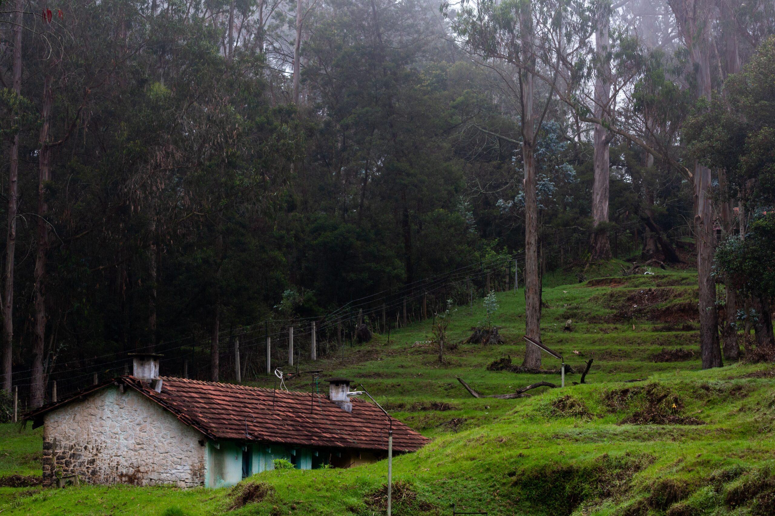 trekking in kodaikannal and stay